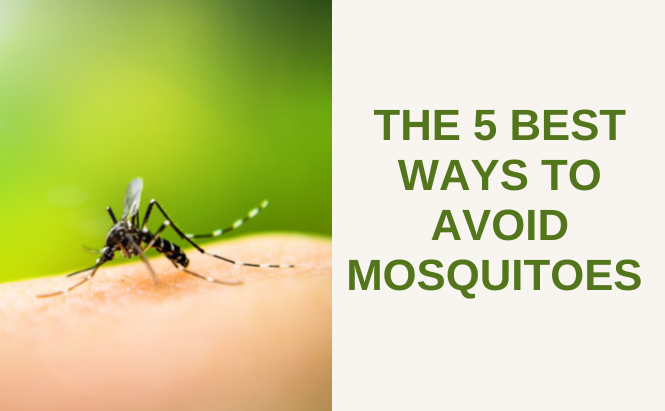 The 5 Best Ways to Avoid Mosquitoes